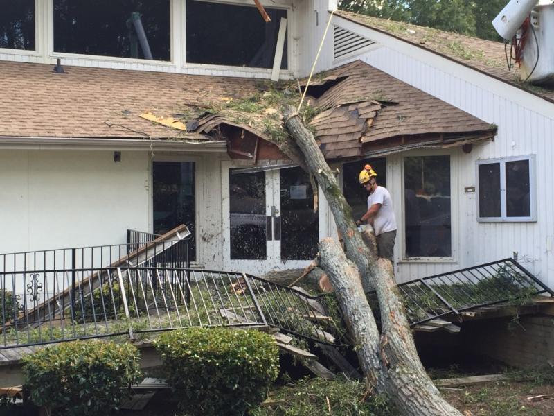 Wind_tree_damage_restoration_4119-1024x768